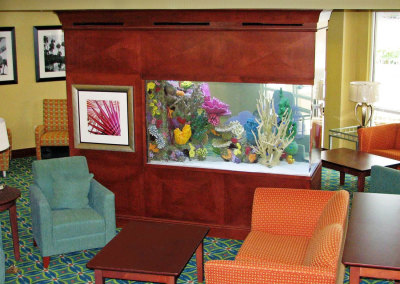 Commercial 400 Gallon Artificial Reef Saltwater System Viewable from 3 Sides with Fully Automated Filtration System, Court Yard Marriott
