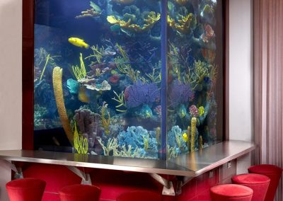 Commercial 2,000 Gallon Custom Artificial Reef Saltwater Aquarium, 3 Sided Viewing with One Side Viewable From the Master Bedroom via One Way Viewing Panel, Cuneo