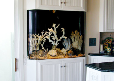 Residential 120 Gallon Saltwater Aquarium System with Filtration Remotely Located