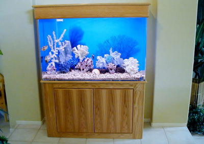 Residential 110 Gallon Saltwater Aquarium System with Natural Coral Decorations