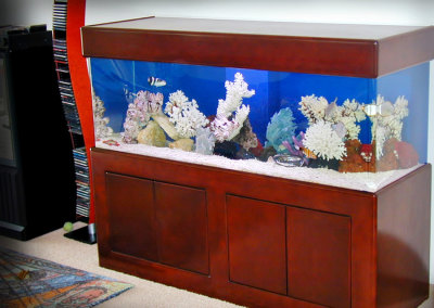 Residential 180 Gallon Saltwater Aquarium System with Natural Coral Decorations
