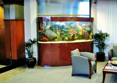 Residential 275 Gallon Custom Bowfront Saltwater Aquarium System with Artificial Reef Structure and Custom Burlwood Cabinetry