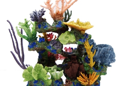 Dominica-with-corals