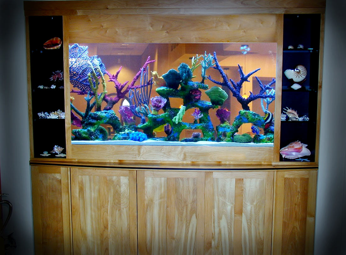 Residential 250 Gallon See Thru Saltwater with Artificial Reef Insert