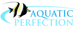 Aquatic Perfection